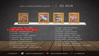 Mehmet Demirtaş - Aklımı Aldın Yarim (Official Audio)