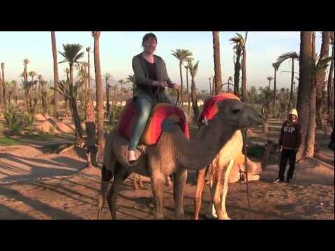 Marrakech, Morocco Holiday Video