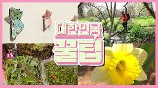 [대한민국 꿀팁] 2020년 5월 4일 다시보기