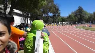 Relevos ESEF 2016 100 metros Masculino Heat 8