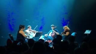 From Shadows (RWBY) - Videri String Quartet Live @ Austin City Limits, RTX 2016