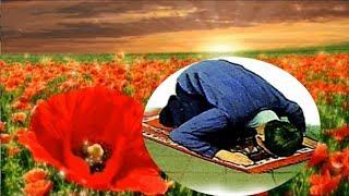 Wa Moslima Worora Qaza Ee Nakri- Gulkhoban Hazratullah