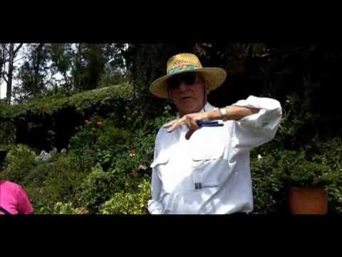 gardenecuador.flv