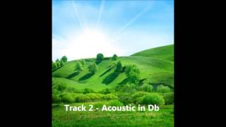 Track 2 - Acoustic in Db