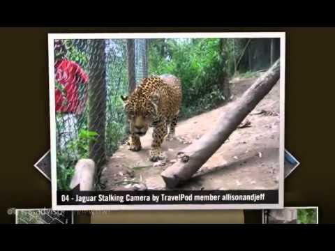"""""""Santa Martha Animal Rescue"""" Allisonandjeff's photos around Tambillo, Ecuador (tambillo ecuador)"""