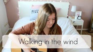 Walking in the wind - One Direction Cover