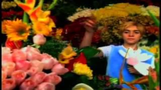 Aterciopelados - Florecita Rockera HD