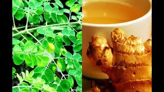 The Amazing Miracle Combination Of Ginger And Moringa, Can Fight Several Diseases!