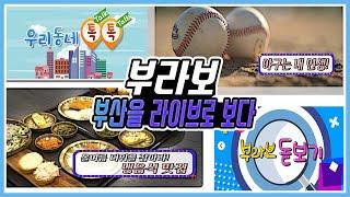 [7월3일 방송] 올여름 더위를 잡아라 / 야구는 내 인생 / 올 여름 해수욕장 안전은 등 다시보기