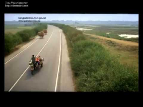 The School of Life (Beautiful Bangladesh) Admission Going on…mp4