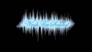 Nesh / NeshTinSound - Vergässe heisst Verbi [2011]