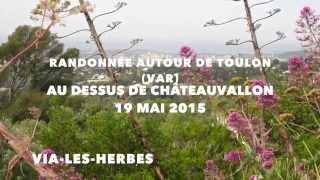 Randonnée au-dessus de Châteauvallon (Toulon dans le Var)