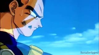 Vegeta Respond To Goku's Death