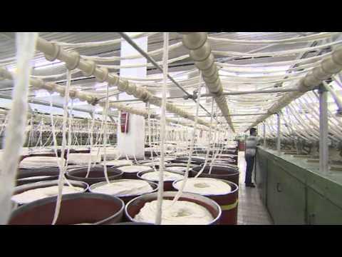 Anateks Anadolu Tekstil Fabrikaları