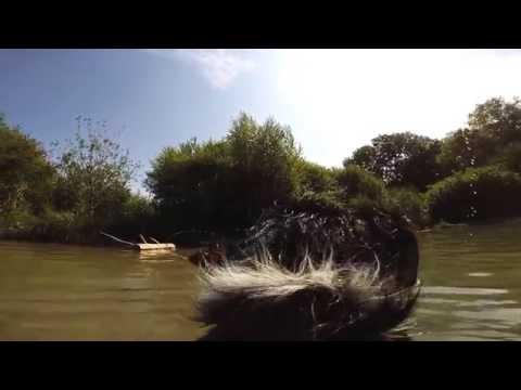 Download Video Summer 15 Thun