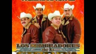 Pajarillo - Los Sembradores De La Sierra