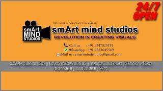 smArt mind studios Logo