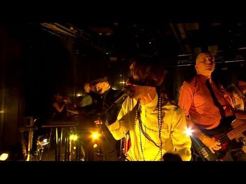 bob-hund-blommor-pa-brinnande-fartyg-live-jenny-stromstedt-tv4-tv4