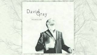 David Gray - In God's Name (Official Audio)