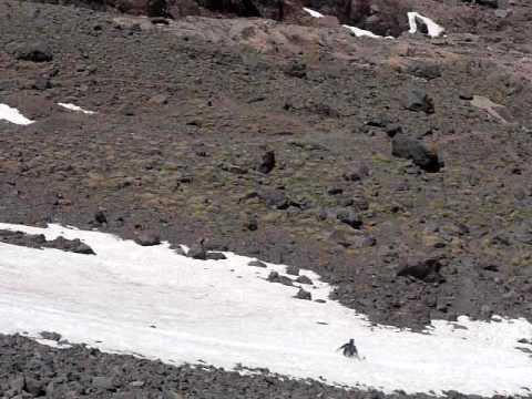 Snow Slide at Mount Toubkal