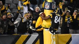 "Antonio Brown || ""Black & Yellow"" || 2015-16 Highlights"