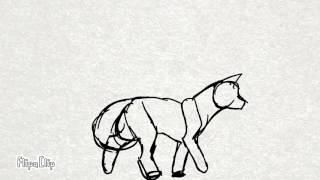 Wolf walking animation test.