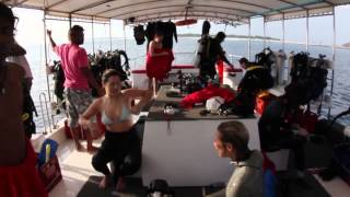 Maldives Scuba Diving, onboard the Theia Liveaboard