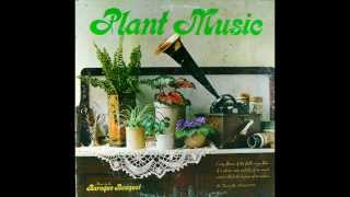 Plant Music -  Silver Queen