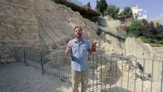 Out of Zion with Ron Cantor