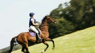 How to make balance in canter easily. Quickest trick.