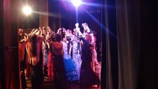 Carmen Opera & Flamenco
