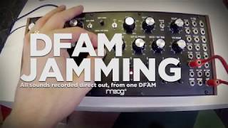 Moog DFAM Techno Jam (No Talking)