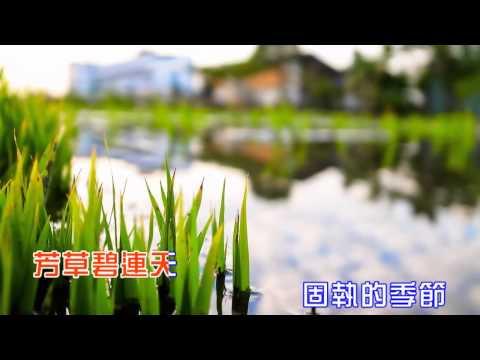 永遠的畫面 (善歌) - YouTube