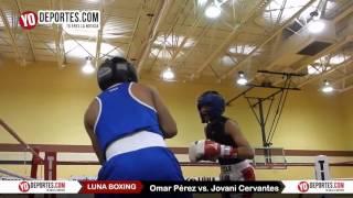 Omar Perez vs. Jovani Cervantes Joliet Luna Boxing 2015