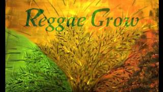 ROGER ROBIN     YOU` RE BEAUTIFUL  ReggaeHD.wmv..aP
