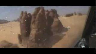 Ribcage - Caravan (Blur cover)