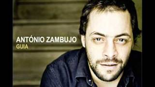 António Zambujo - A Deusa da Minha Rua
