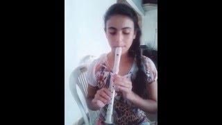 Shake it off Taylor Swift na flauta doce