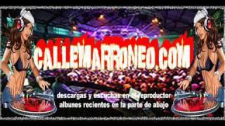 dj warner y dj tony ft DJ Ricky - Duro Sin Pena Mix.(WwW.CaLLeMaRRoNeO.CoM)..wmv