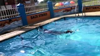 swimming styles - Taibah International School