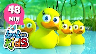Five Little Ducks - THE BEST Nursery Rhymes and Songs for Children | LooLooKids width=
