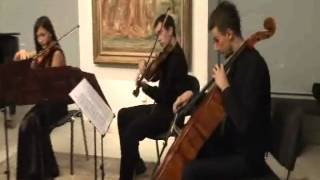 J. Haydn - String Quartet Op. 50, No. 3, III Menuetto: Alegretto - Trio