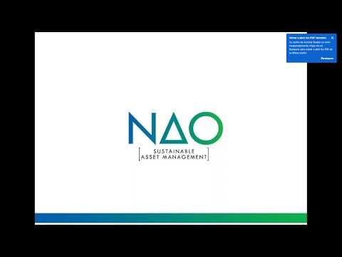 NAO Europa Sostenible: Análisis de la cartera y principales posiciones