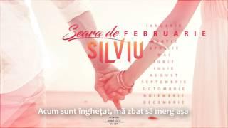 SilViu - Seară De Februarie