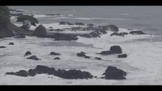 TODA LA GLORIA - CARLOS HERRERA Official lyric video