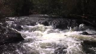Relaxing flowing water stream