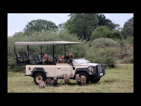 Safari With Friends – South Africa, Botswana, Zimbabwe