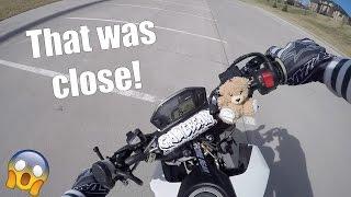 Almost Crashed After a Wheelie   We Met Spiderman   Wheelies Give Me Feelies