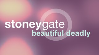 Stoneygate: Beautiful Deadly Lyrics Video