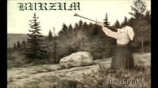 Burzum  -  Dunkelheit (INSTRUMENTAL)